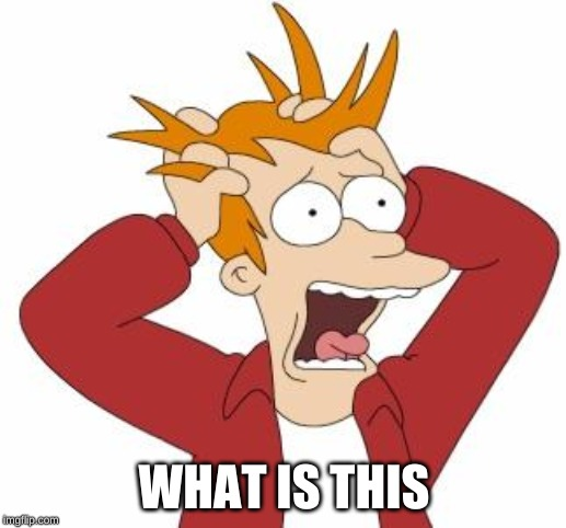Fry Freaking Out | WHAT IS THIS | image tagged in fry freaking out | made w/ Imgflip meme maker