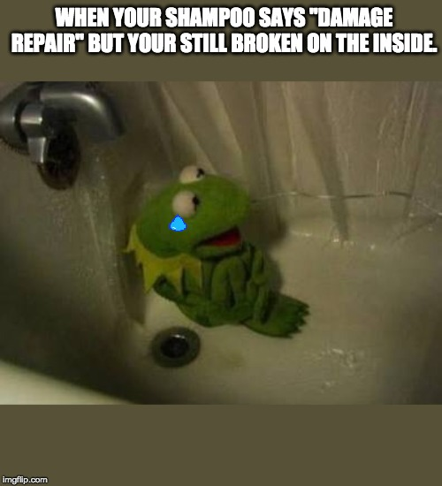 "Kermit Shower |  WHEN YOUR SHAMPOO SAYS ""DAMAGE REPAIR"" BUT YOUR STILL BROKEN ON THE INSIDE. 