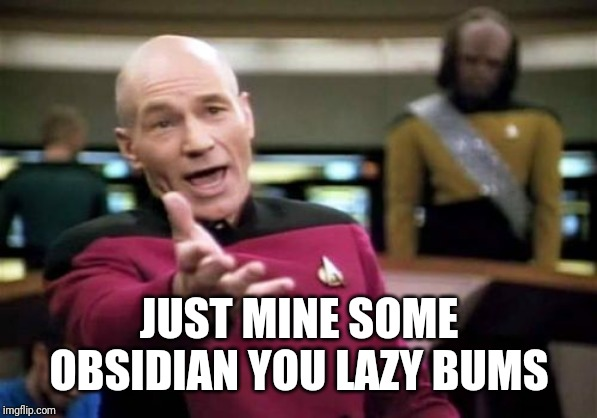 Picard Wtf Meme | JUST MINE SOME OBSIDIAN YOU LAZY BUMS | image tagged in memes,picard wtf | made w/ Imgflip meme maker