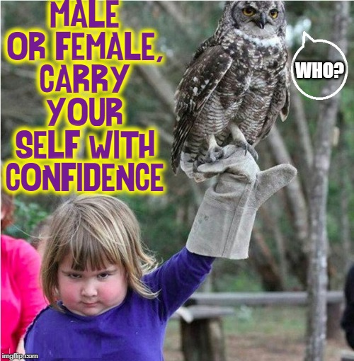 You Gotta Have Heart | MALE OR FEMALE, CARRY YOUR SELF WITH CONFIDENCE WHO? | image tagged in vince vance,owls,children,confidence,learned behavior,courage | made w/ Imgflip meme maker