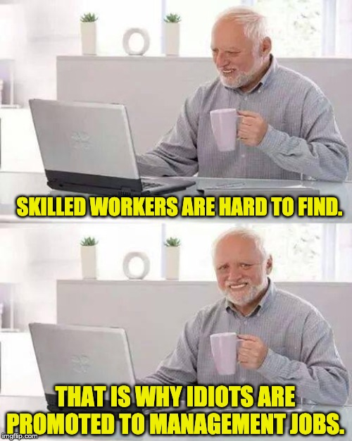 Hide the Pain Harold Meme | SKILLED WORKERS ARE HARD TO FIND. THAT IS WHY IDIOTS ARE PROMOTED TO MANAGEMENT JOBS. | image tagged in memes,hide the pain harold | made w/ Imgflip meme maker