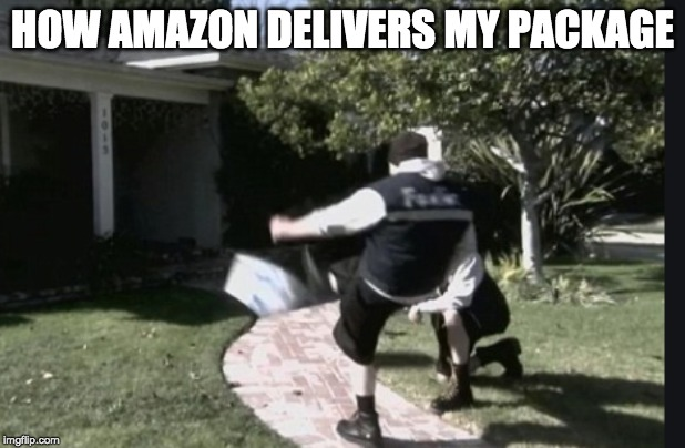 HOW AMAZON DELIVERS MY PACKAGE | image tagged in delivery,amazon,package,meme | made w/ Imgflip meme maker