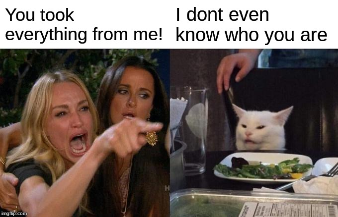 Woman Yelling At Cat |  You took everything from me! I dont even know who you are | image tagged in memes,woman yelling at a cat | made w/ Imgflip meme maker