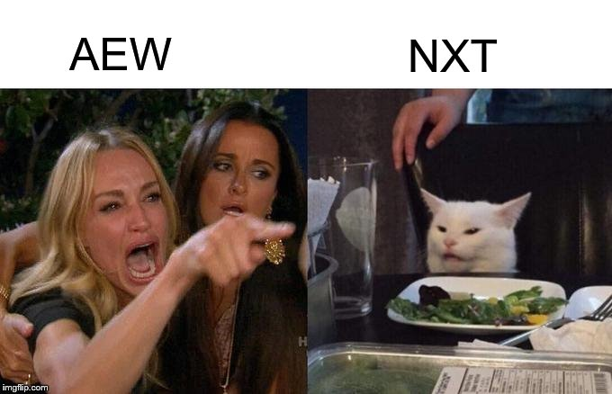 AEW or NXT |  AEW; NXT | image tagged in memes,woman yelling at a cat,pro wrestling | made w/ Imgflip meme maker