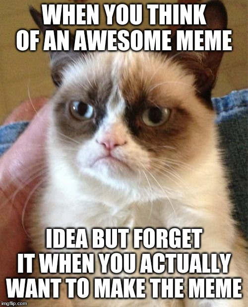 Grumpy Cat | WHEN YOU THINK OF AN AWESOME MEME IDEA BUT FORGET IT WHEN YOU ACTUALLY WANT TO MAKE THE MEME | image tagged in memes,grumpy cat | made w/ Imgflip meme maker