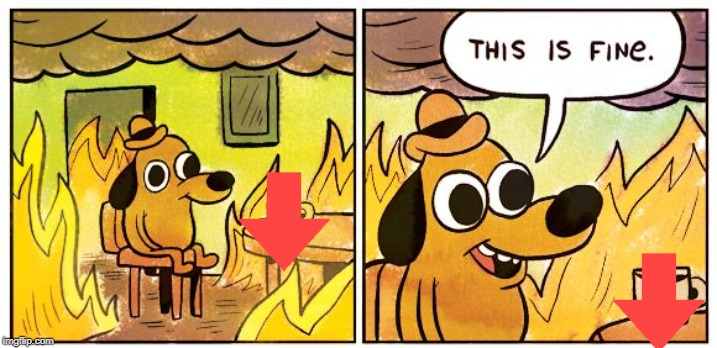 This is fine dog | image tagged in this is fine dog | made w/ Imgflip meme maker