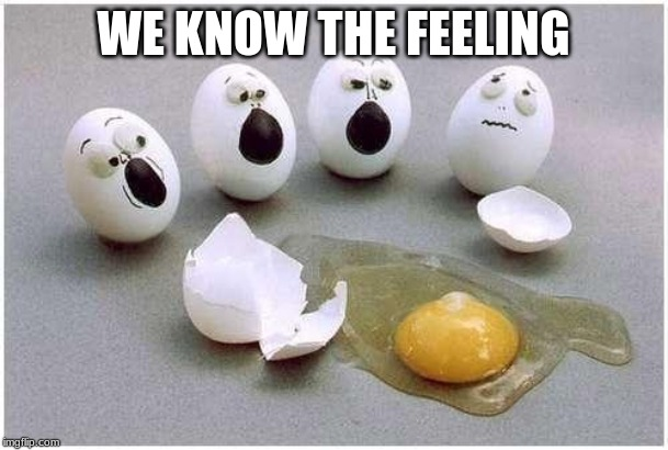 This Broken Egg | WE KNOW THE FEELING | image tagged in this broken egg | made w/ Imgflip meme maker