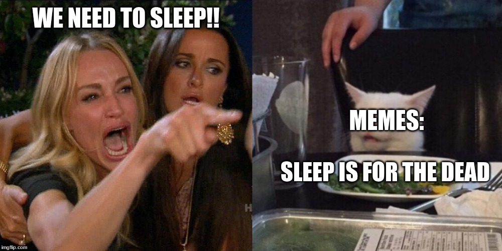 Woman yelling at cat | WE NEED TO SLEEP!! SLEEP IS FOR THE DEAD MEMES: | image tagged in woman yelling at cat | made w/ Imgflip meme maker