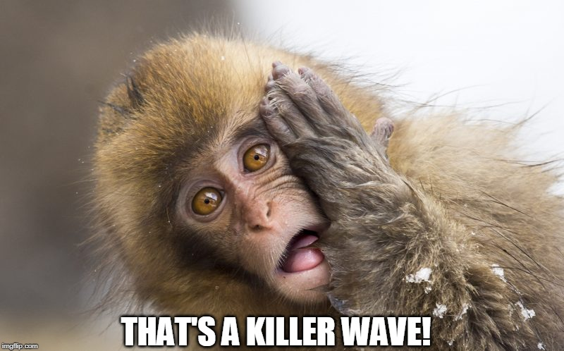 Huh? | THAT'S A KILLER WAVE! | image tagged in huh | made w/ Imgflip meme maker