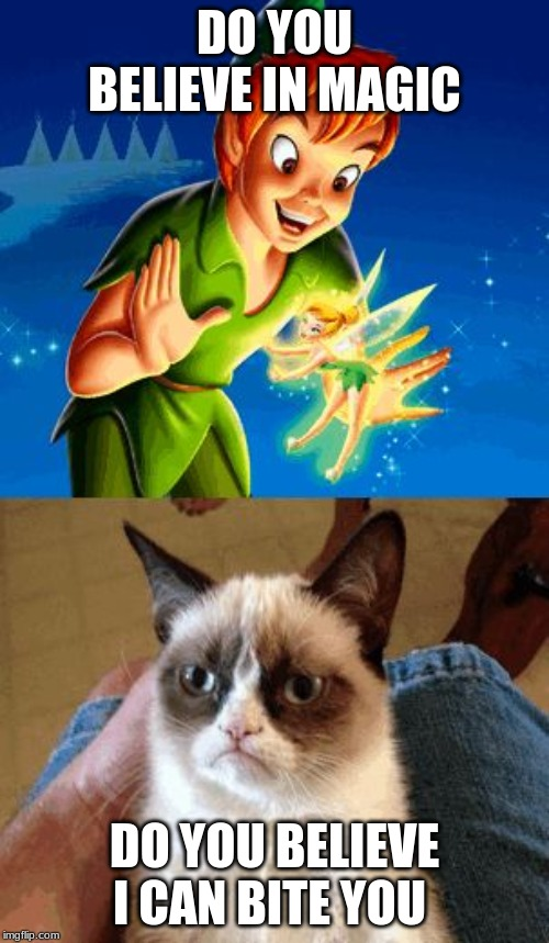 Grumpy Cat Does Not Believe Meme |  DO YOU BELIEVE IN MAGIC; DO YOU BELIEVE I CAN BITE YOU | image tagged in memes,grumpy cat does not believe,grumpy cat | made w/ Imgflip meme maker