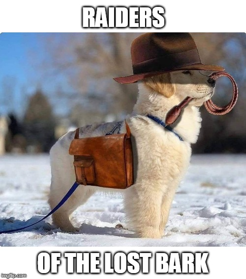 DOGE JONES | RAIDERS OF THE LOST BARK | image tagged in doge,indiana jones | made w/ Imgflip meme maker