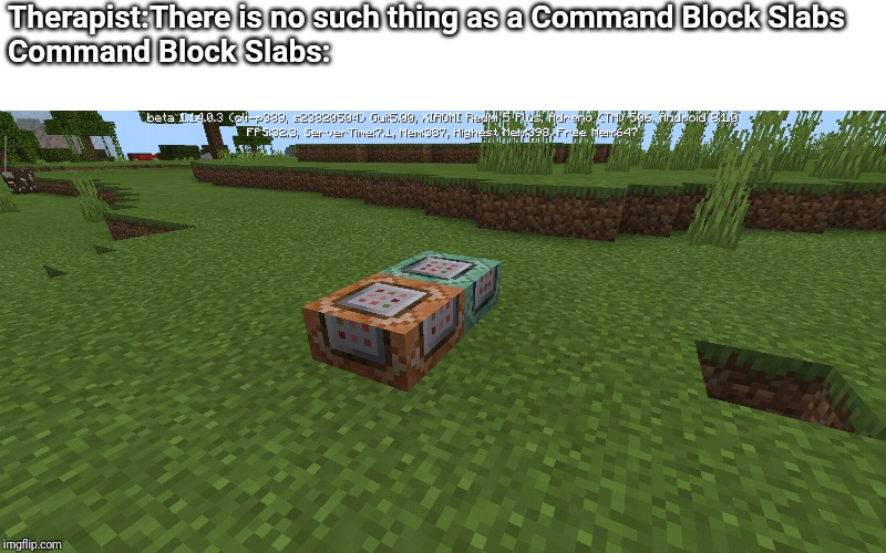There is no such thing as a |  Therapist:There is no such thing as a Command Block Slabs Command Block Slabs: | image tagged in therapist | made w/ Imgflip meme maker