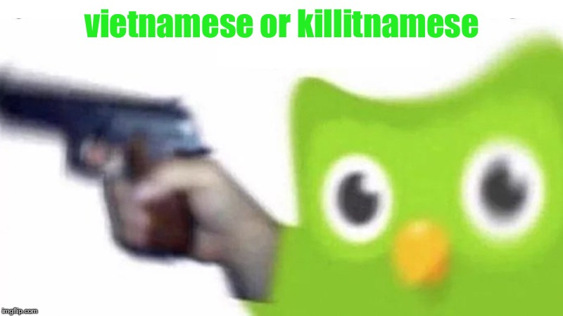 duolingo gun | vietnamese or killitnamese | image tagged in duolingo gun | made w/ Imgflip meme maker
