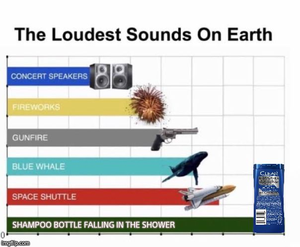 Loudest sound ever |  SHAMPOO BOTTLE FALLING IN THE SHOWER | image tagged in the loudest sounds on earth,memes | made w/ Imgflip meme maker