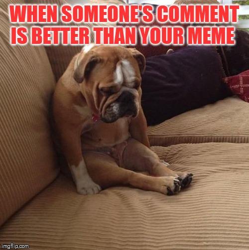 bulldogsad | WHEN SOMEONE'S COMMENT IS BETTER THAN YOUR MEME | image tagged in bulldogsad | made w/ Imgflip meme maker