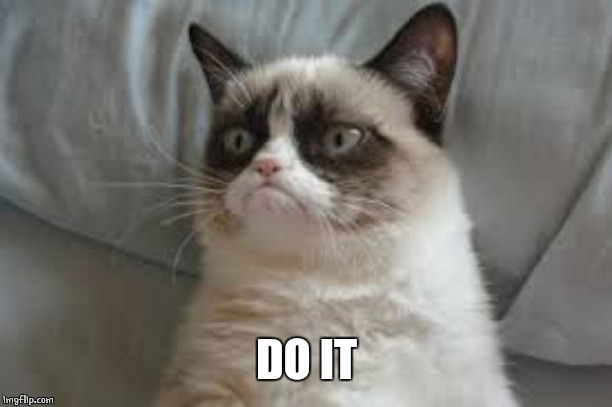 Grumpy cat | DO IT | image tagged in grumpy cat | made w/ Imgflip meme maker