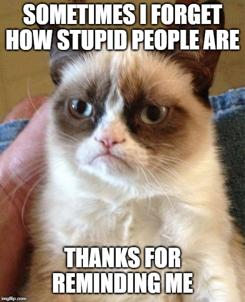 Grumpy Cat Forever | SOMETIMES I FORGET HOW STUPID PEOPLE ARE THANKS FOR REMINDING ME | image tagged in memes,grumpy cat | made w/ Imgflip meme maker