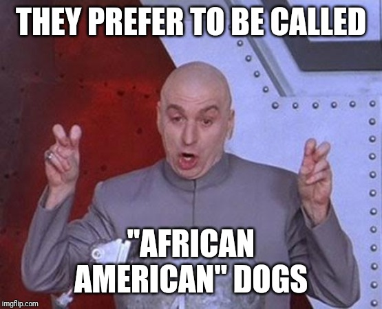 "Dr Evil Laser Meme | THEY PREFER TO BE CALLED ""AFRICAN AMERICAN"" DOGS 