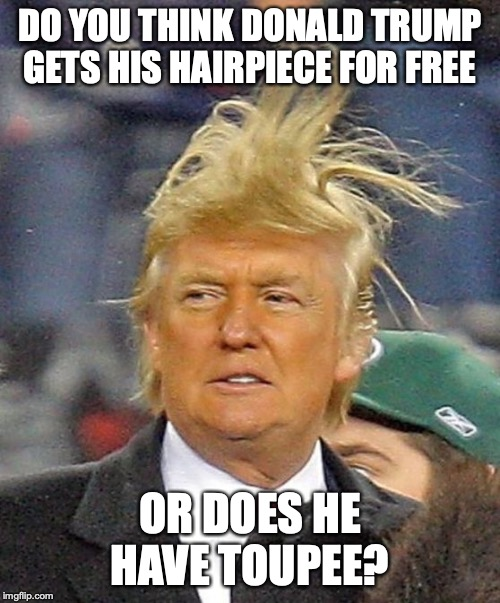 Donald Trumph hair | DO YOU THINK DONALD TRUMP GETS HIS HAIRPIECE FOR FREE OR DOES HE HAVE TOUPEE? | image tagged in donald trumph hair | made w/ Imgflip meme maker
