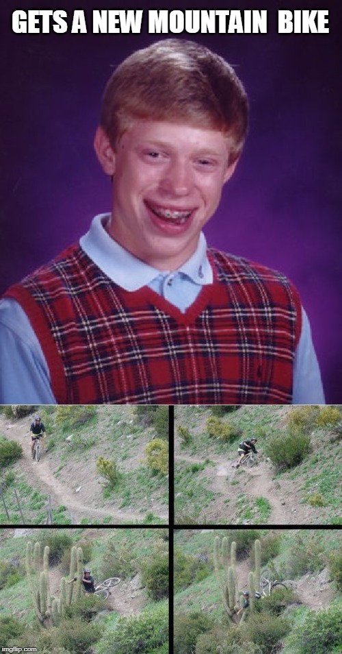 cacti | GETS A NEW MOUNTAIN  BIKE | image tagged in memes,bad luck brian,cactus | made w/ Imgflip meme maker