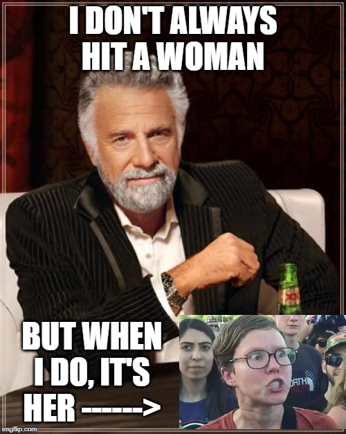She Deserves to be Hit | I DON'T ALWAYS HIT A WOMAN BUT WHEN I DO, IT'S HER ------> | image tagged in memes,the most interesting man in the world | made w/ Imgflip meme maker