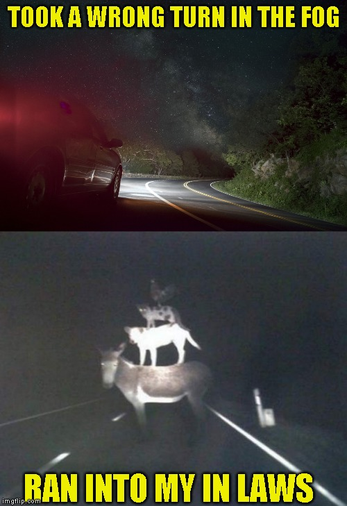 Guess it was a short cut after all | TOOK A WRONG TURN IN THE FOG RAN INTO MY IN LAWS | image tagged in happy halloween | made w/ Imgflip meme maker