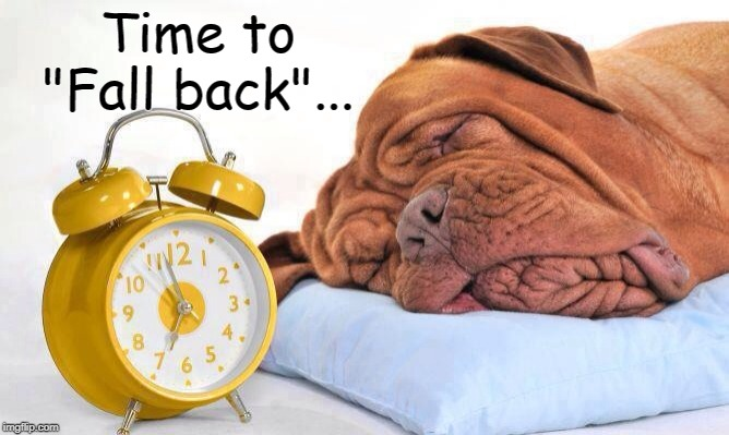 "Fall Back... |  Time to ""Fall back""... 