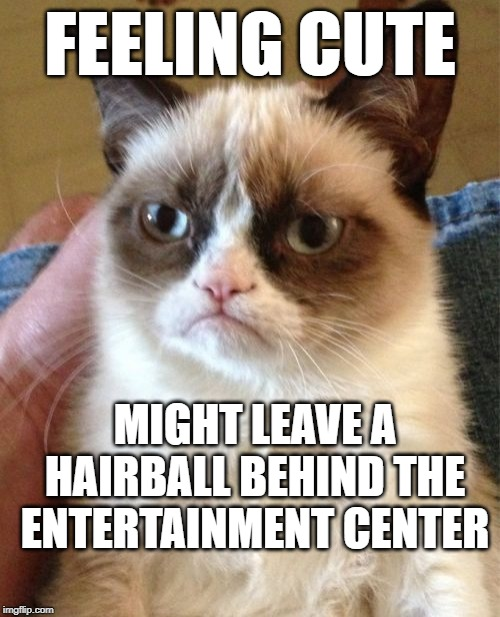 Grumpy Cat | FEELING CUTE MIGHT LEAVE A HAIRBALL BEHIND THE ENTERTAINMENT CENTER | image tagged in memes,grumpy cat | made w/ Imgflip meme maker