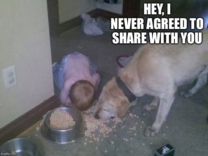 Dog food kid | HEY, I NEVER AGREED TO SHARE WITH YOU | image tagged in dog food kid | made w/ Imgflip meme maker