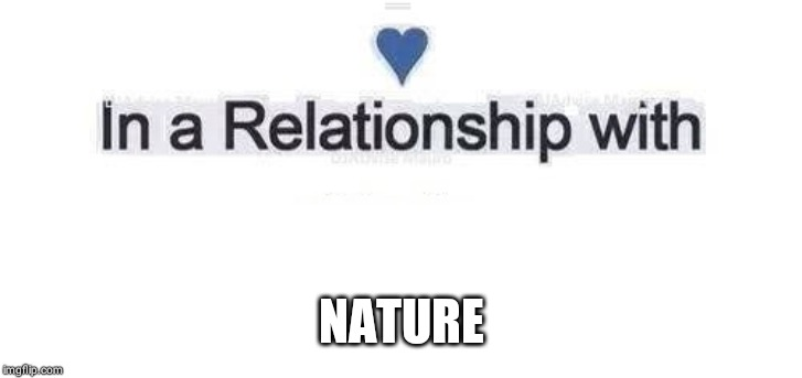 In a relationship | NATURE | image tagged in in a relationship | made w/ Imgflip meme maker
