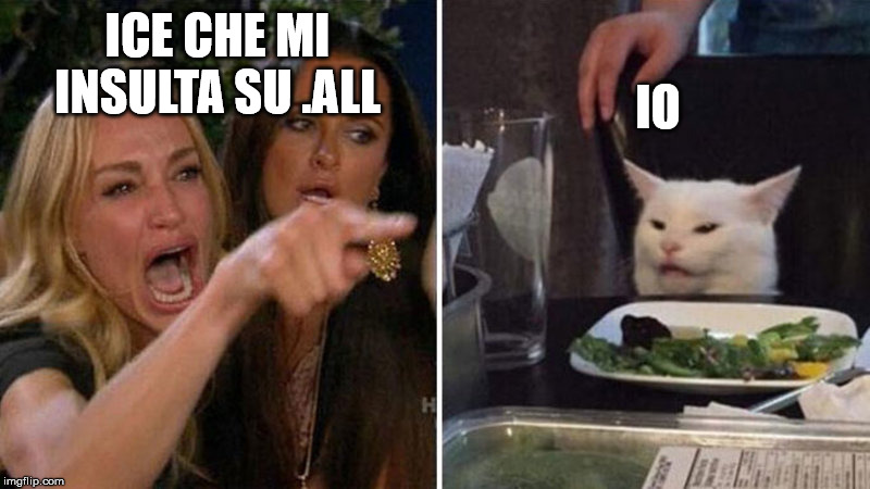 Crying Woman vs Cat | ICE CHE MI INSULTA SU .ALL IO | image tagged in crying woman vs cat | made w/ Imgflip meme maker
