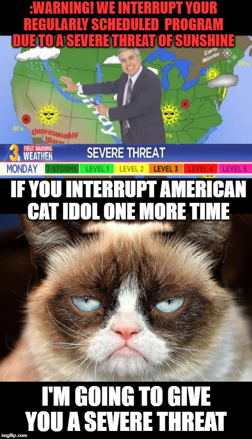 Severe Threat |  :WARNING! WE INTERRUPT YOUR REGULARLY SCHEDULED  PROGRAM DUE TO A SEVERE THREAT OF SUNSHINE; IF YOU INTERRUPT AMERICAN CAT IDOL ONE MORE TIME; I'M GOING TO GIVE YOU A SEVERE THREAT | image tagged in memes,grumpy cat not amused,weatherman,tv humor,funny memes | made w/ Imgflip meme maker