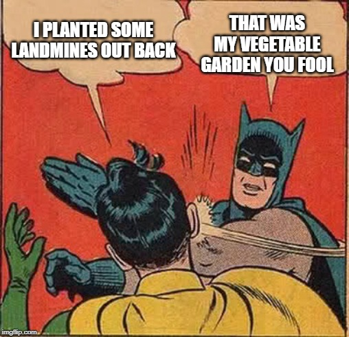 Batman Slapping Robin Meme | I PLANTED SOME LANDMINES OUT BACK THAT WAS MY VEGETABLE GARDEN YOU FOOL | image tagged in memes,batman slapping robin | made w/ Imgflip meme maker