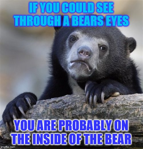 Confession Bear | IF YOU COULD SEE THROUGH A BEARS EYES YOU ARE PROBABLY ON THE INSIDE OF THE BEAR | image tagged in memes,confession bear,funny meme | made w/ Imgflip meme maker