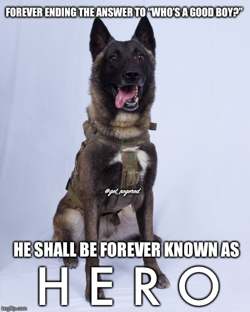 "Hero who helped kill Al-Baghdadi | FOREVER ENDING THE ANSWER TO ""WHO'S A GOOD BOY?"" HE SHALL BE FOREVER KNOWN AS H E R O @get_rogered 