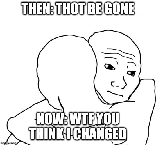 I Know That Feel Bro |  THEN: THOT BE GONE; NOW: WTF YOU THINK I CHANGED | image tagged in memes,i know that feel bro | made w/ Imgflip meme maker