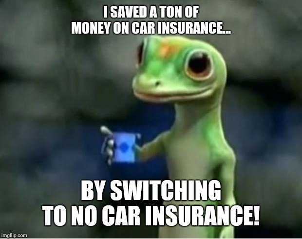 Geico Gecko | I SAVED A TON OF MONEY ON CAR INSURANCE... BY SWITCHING TO NO CAR INSURANCE! | image tagged in geico gecko | made w/ Imgflip meme maker
