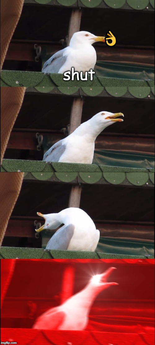 Inhaling Seagull | ? shut | image tagged in memes,inhaling seagull | made w/ Imgflip meme maker