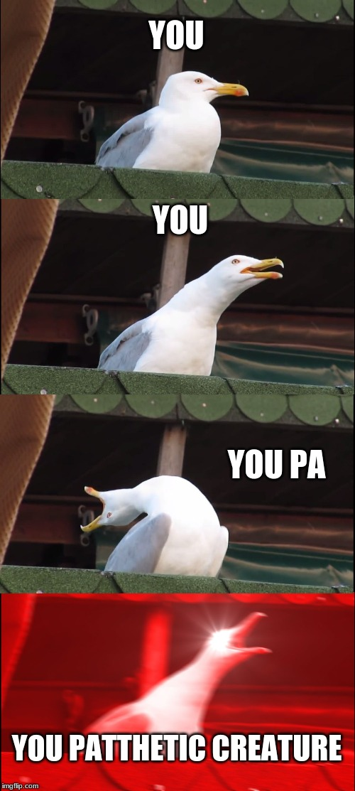 Inhaling Seagull Meme |  YOU; YOU; YOU PA; YOU PATTHETIC CREATURE | image tagged in memes,inhaling seagull | made w/ Imgflip meme maker