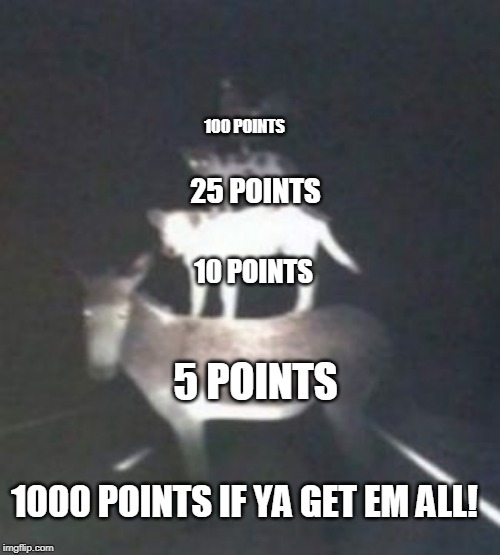 100 POINTS 5 POINTS 10 POINTS 25 POINTS 1000 POINTS IF YA GET EM ALL! | made w/ Imgflip meme maker