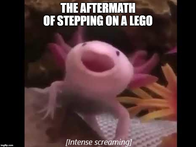Axolotl |  THE AFTERMATH OF STEPPING ON A LEGO | image tagged in axolotl | made w/ Imgflip meme maker