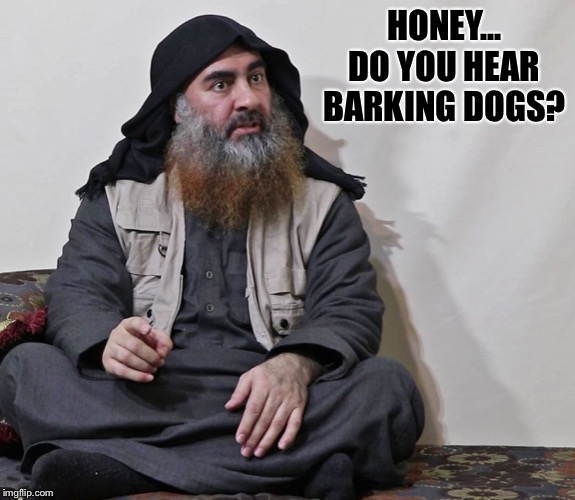 Who's your BaghDaddy? The last thing he heard before the explosion... |  HONEY... DO YOU HEAR BARKING DOGS? | image tagged in isis,baghdadi | made w/ Imgflip meme maker