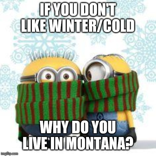 winter minions | IF YOU DON'T LIKE WINTER/COLD WHY DO YOU LIVE IN MONTANA? | image tagged in winter minions | made w/ Imgflip meme maker