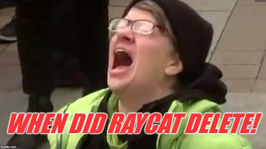 Is he lurking under a different account? I had something to share with him!! |  WHEN DID RAYCAT DELETE! | image tagged in screaming liberal,nixieknox,a day late,raycat,memes | made w/ Imgflip meme maker