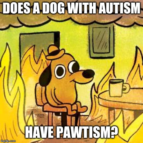Dog in burning house | DOES A DOG WITH AUTISM HAVE PAWTISM? | image tagged in dog in burning house | made w/ Imgflip meme maker