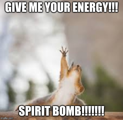 power bomb | GIVE ME YOUR ENERGY!!! SPIRIT BOMB!!!!!!! | image tagged in funny,funny memes,animals,funny animal meme,funny animal | made w/ Imgflip meme maker