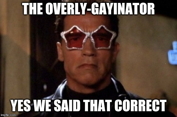 THE OVERLY-GAYINATOR YES WE SAID THAT CORRECT | image tagged in terminator sunglasses | made w/ Imgflip meme maker