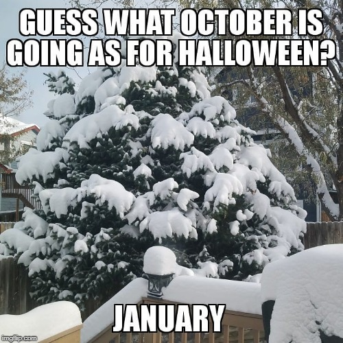 Weather Costume | image tagged in halloween,weather | made w/ Imgflip meme maker