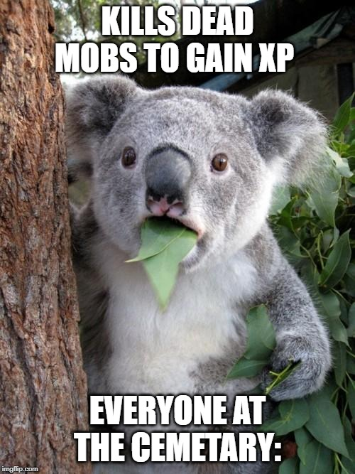 Surprised Koala |  KILLS DEAD MOBS TO GAIN XP; EVERYONE AT THE CEMETARY: | image tagged in memes,surprised koala | made w/ Imgflip meme maker