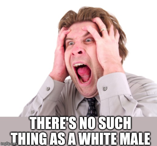 Screaming Man | THERE'S NO SUCH THING AS A WHITE MALE | image tagged in screaming man | made w/ Imgflip meme maker